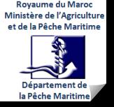 Péche-maritime
