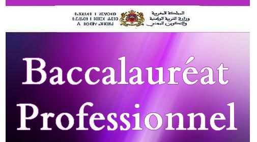 bac-profesionnel