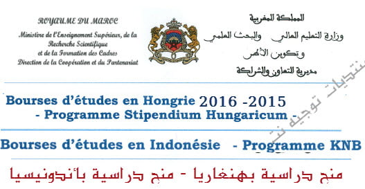 Bourses-d%C3%A9tudes-en-Hongrie-indonesie