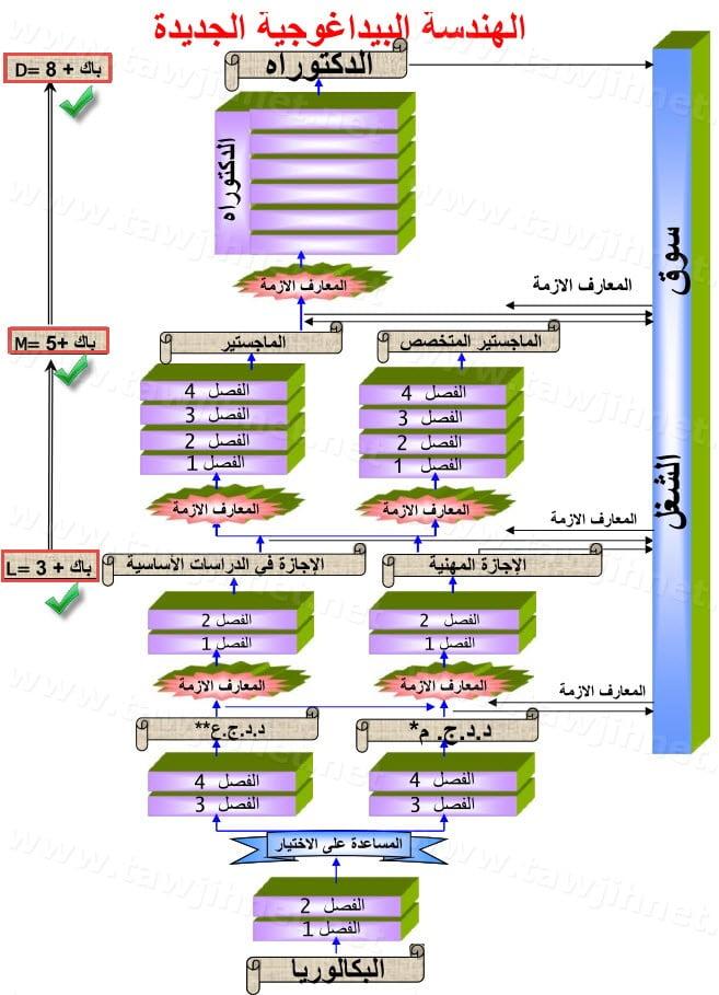 histogramme-universite