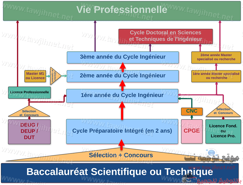 diagramme-ensa