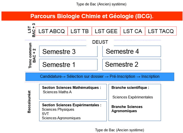 Info-Formatin-LST-BCG