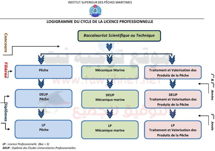 ISPM-agadir-Cursus-Licence-Pro