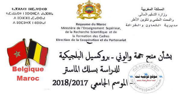 Pins-Maroc-Belgique