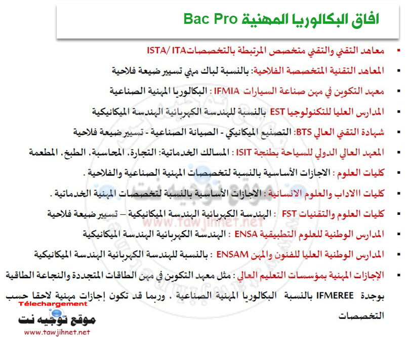 Baccalaureat-professionnel-Bac-Pro
