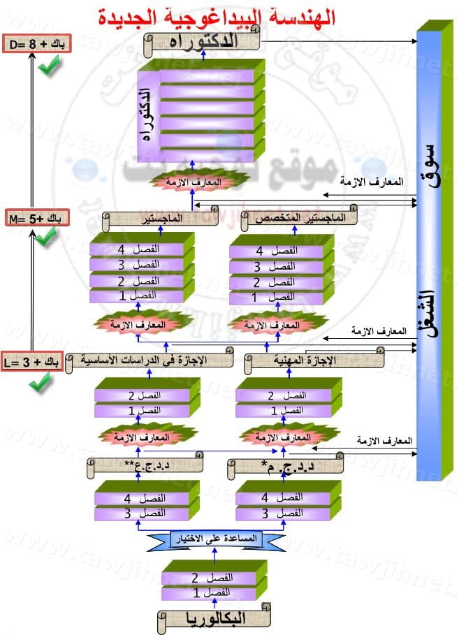 histogramme-universite-faculte-maroc