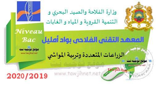 Concours Institut technique agricole d'Oued Amlil Taza 2019-2020 المعهد التقني الفلاحي بواد أمليل - تازة