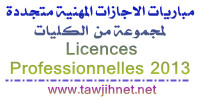 licence-professionnelle