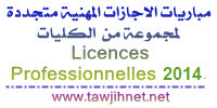 licence-professionnelle%202014