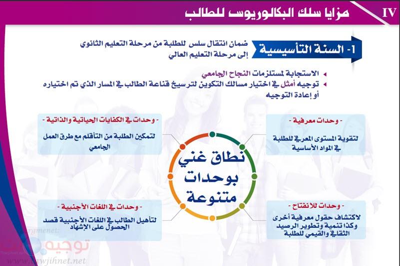 Maroc Baccalaureus Bachelor-2.jpg
