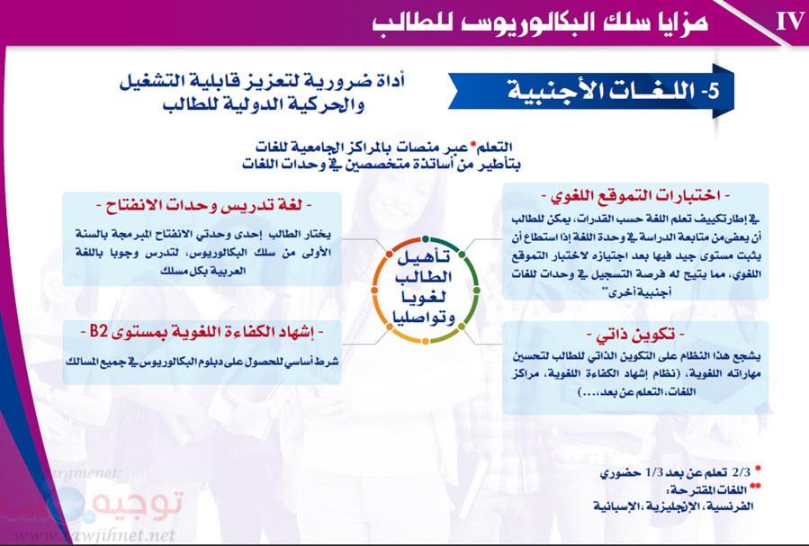 Maroc Baccalaureus Bachelor-5.jpg