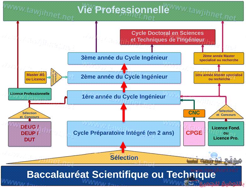 diagramme-ensa.png